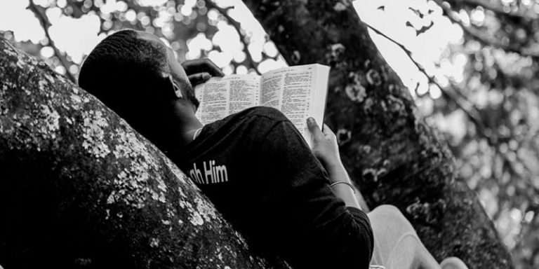 A Man Reading a Book on a Tree Branch